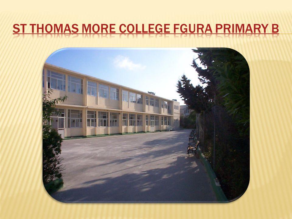 St Thomas More College Fgura Primary B