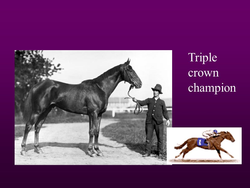 Man O War Triple crown champion