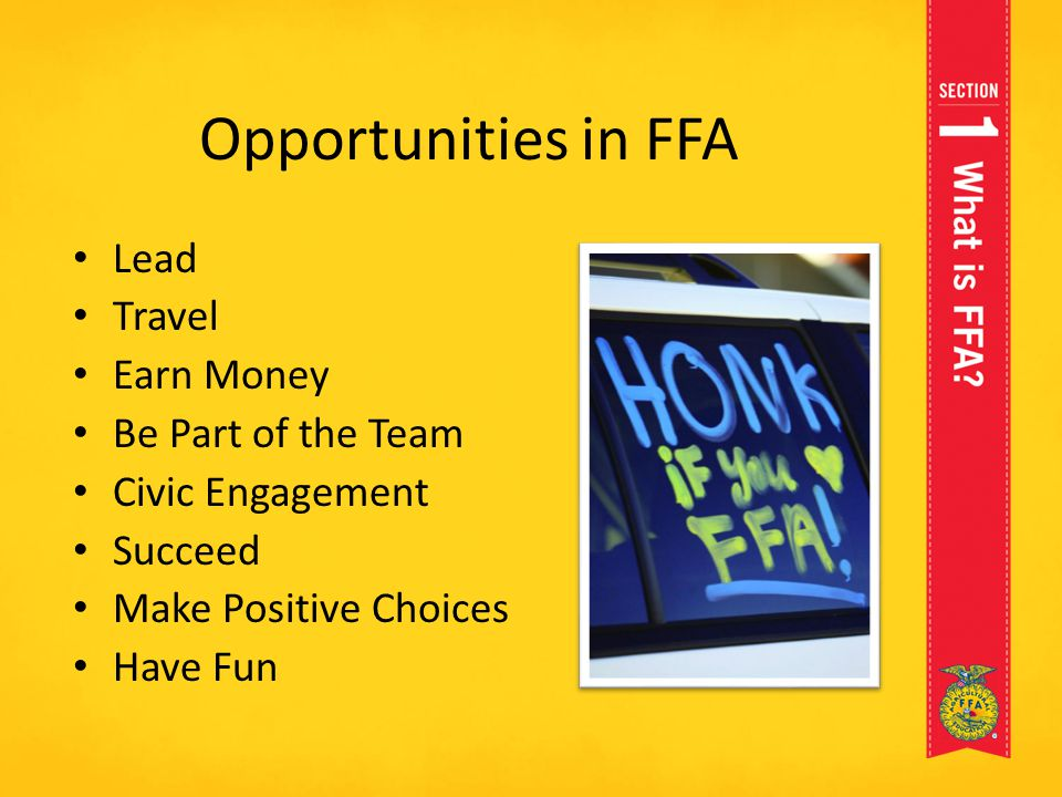 Opportunities in FFA Lead Travel Earn Money Be Part of the Team
