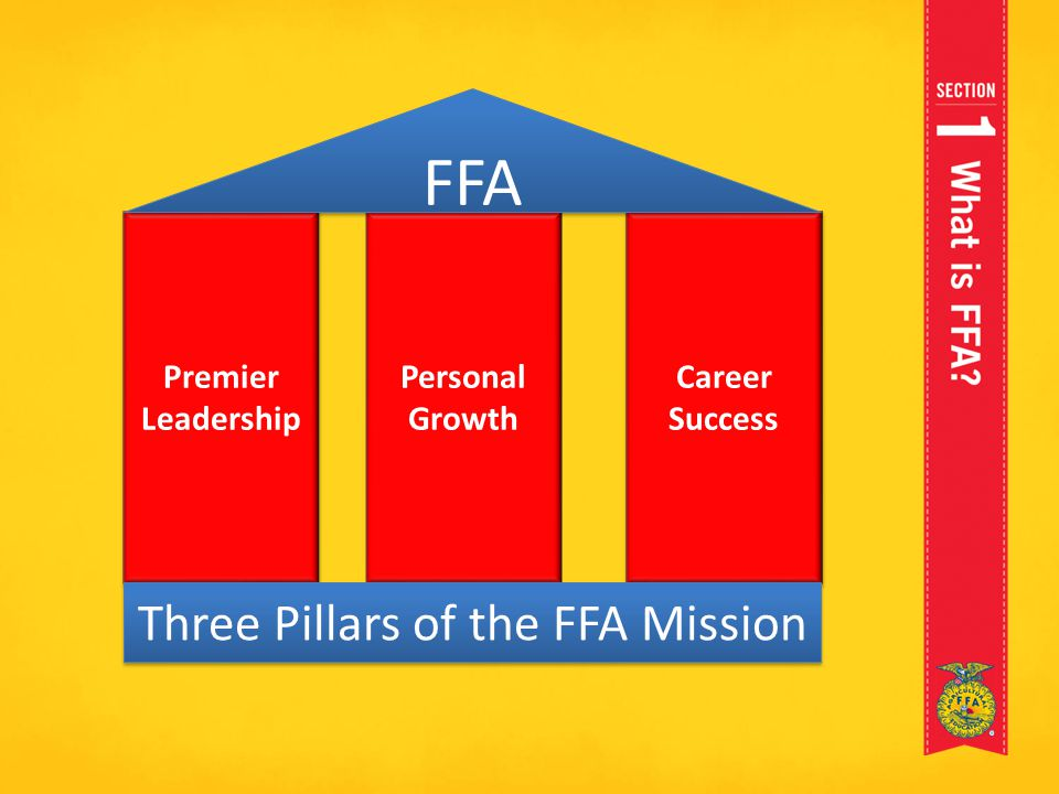 Three Pillars of the FFA Mission