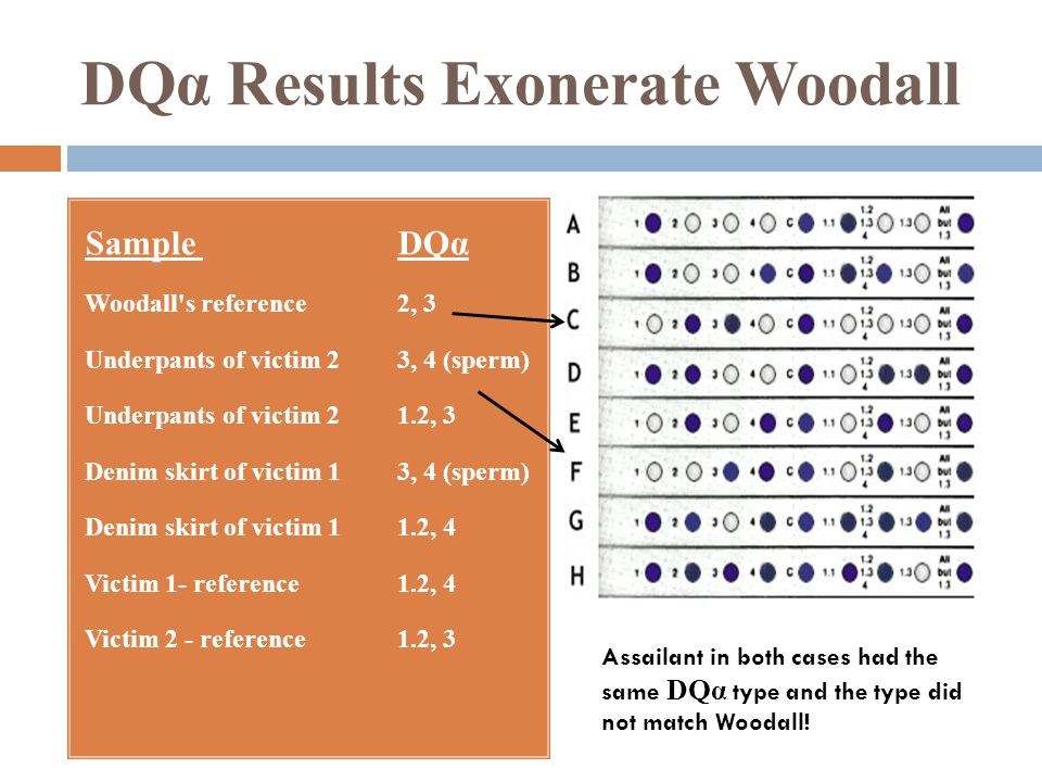 DQα Results Exonerate Woodall