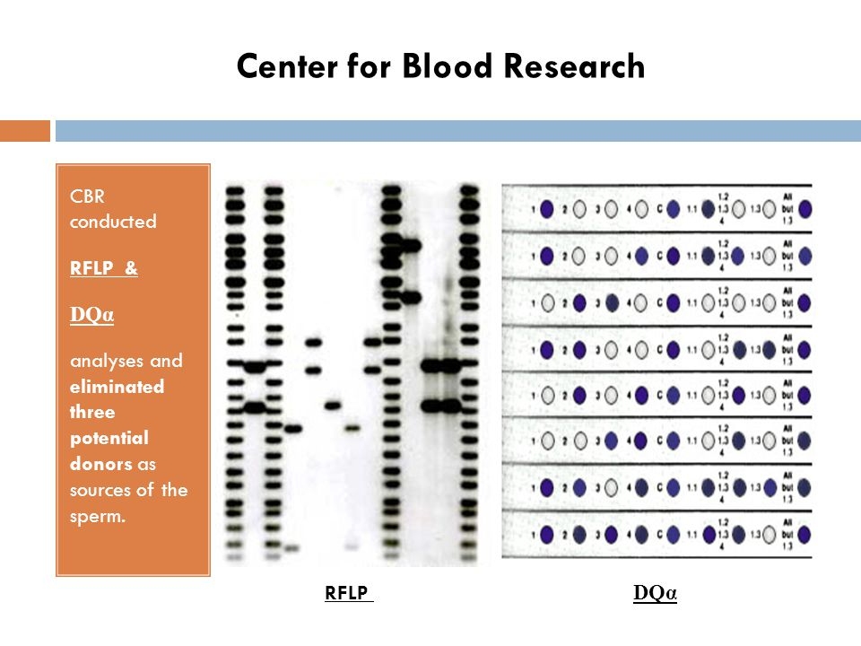 Center for Blood Research