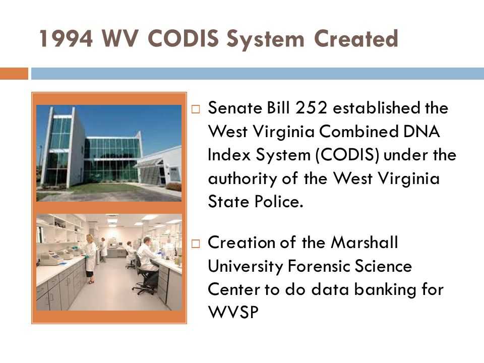 1994 WV CODIS System Created