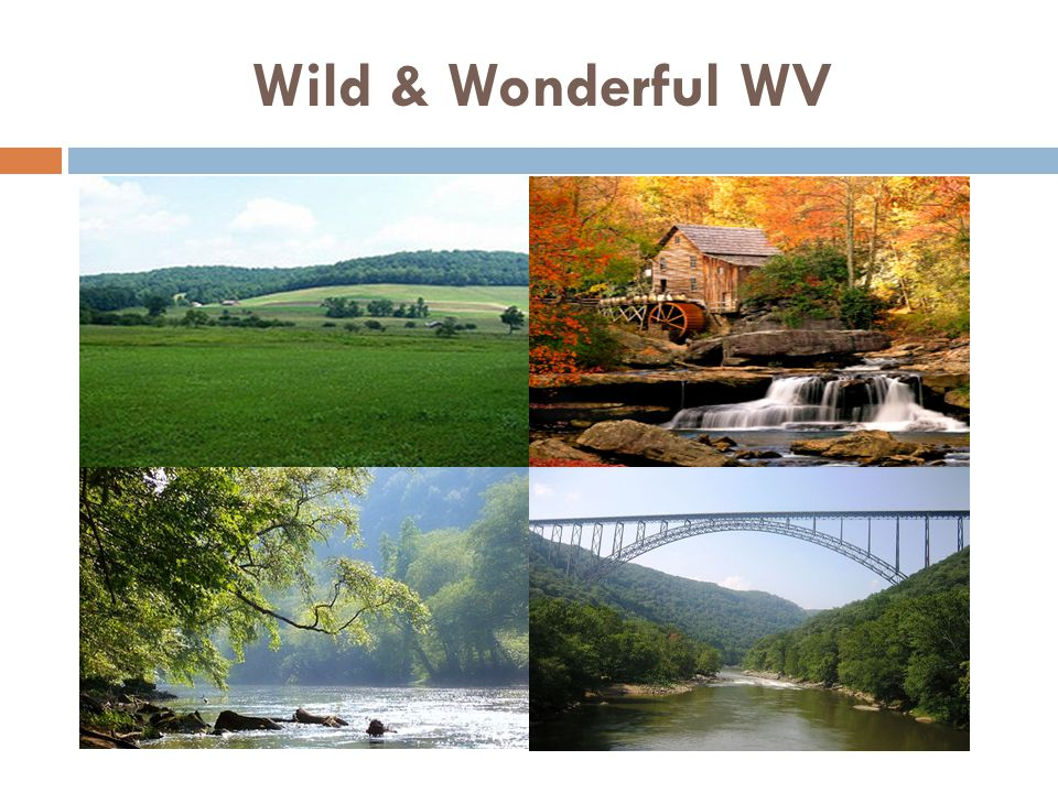Wild & Wonderful WV Almost Heaven!