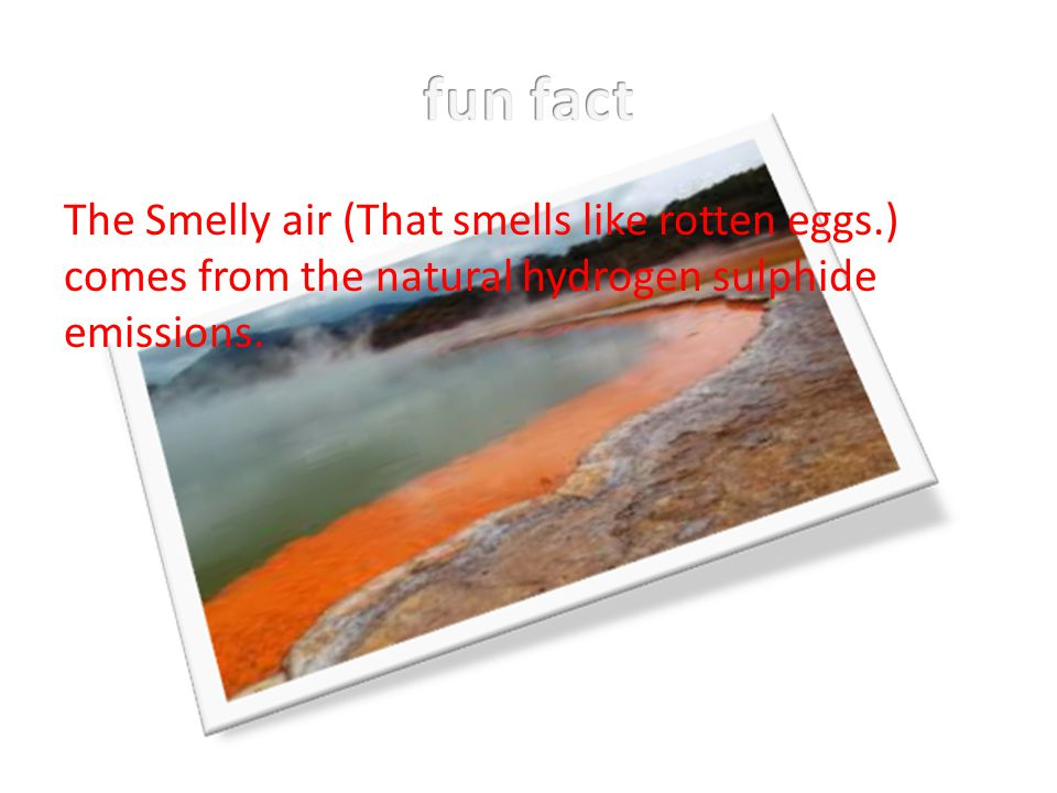 fun fact The Smelly air (That smells like rotten eggs.) comes from the natural hydrogen sulphide emissions.