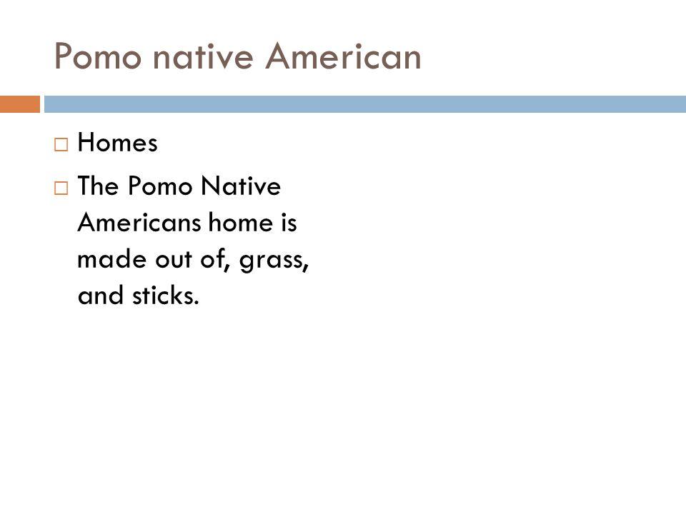Pomo native American Homes