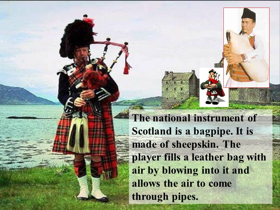The national instrument of Scotland is a bagpipe