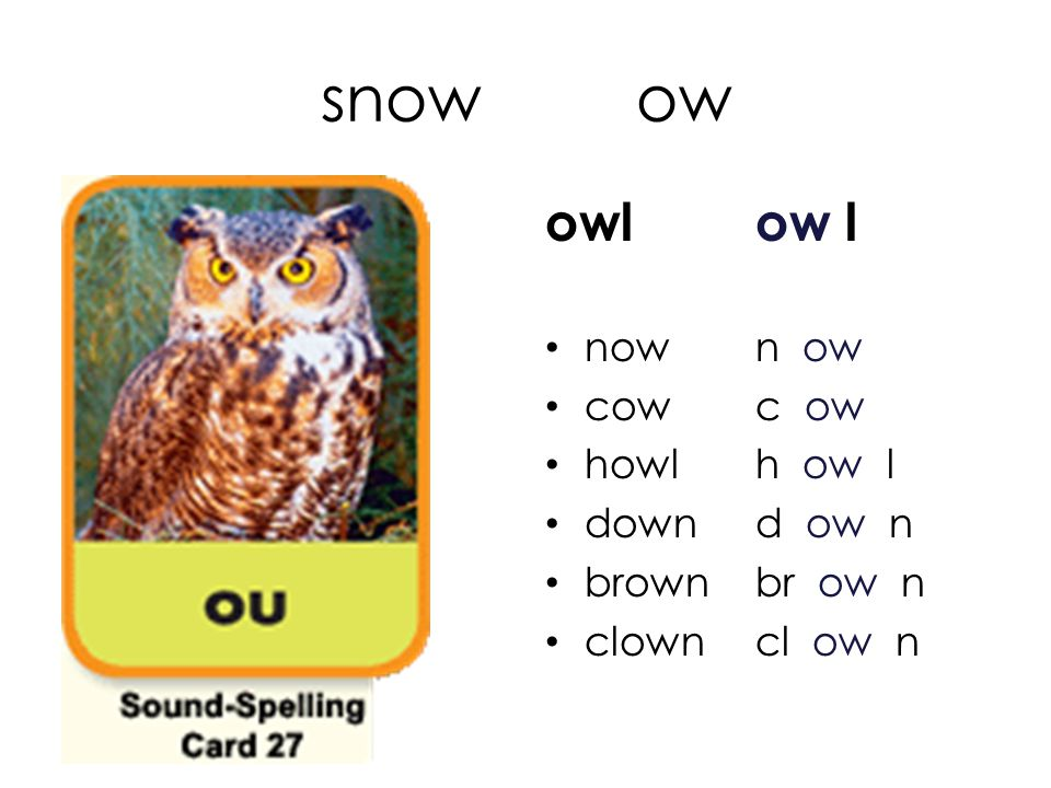 snow ow owl ow l now n ow cow c ow howl h ow l down d ow n