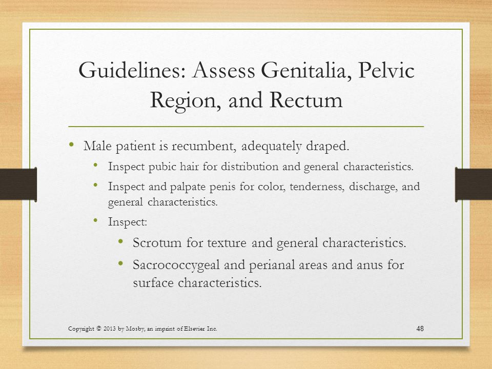 Guidelines: Assess Genitalia, Pelvic Region, and Rectum