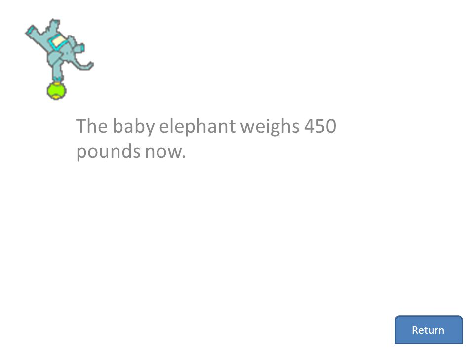 The baby elephant weighs 450 pounds now.