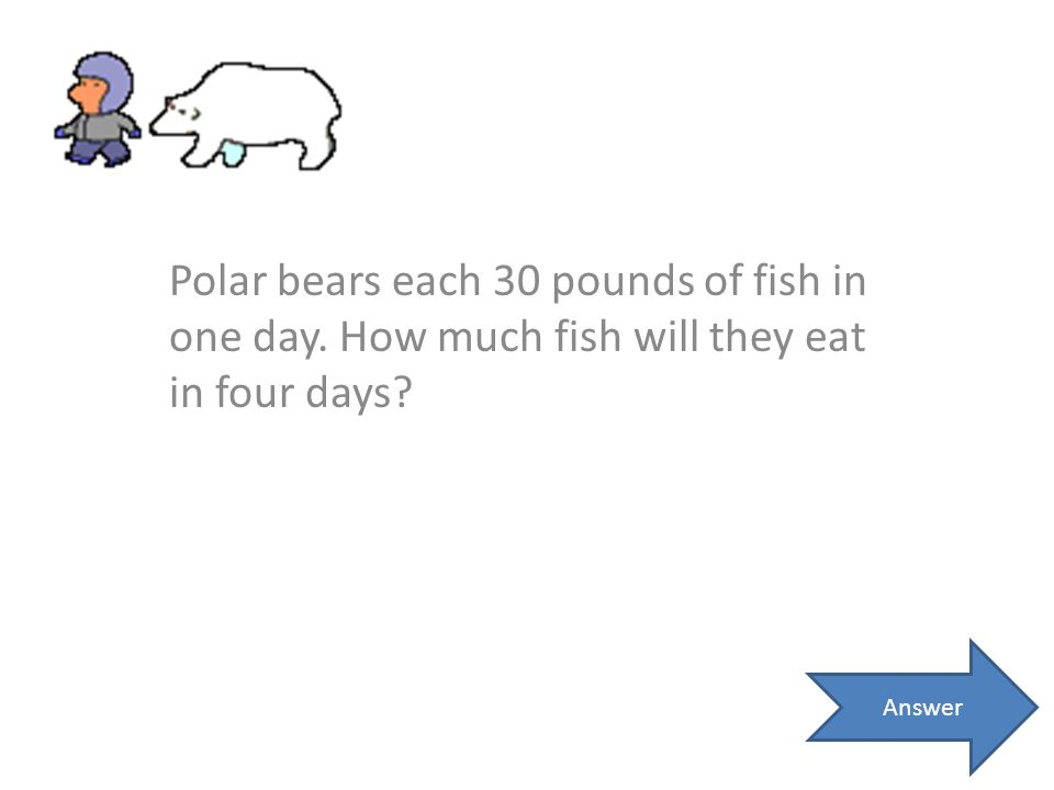 Polar bears each 30 pounds of fish in one day