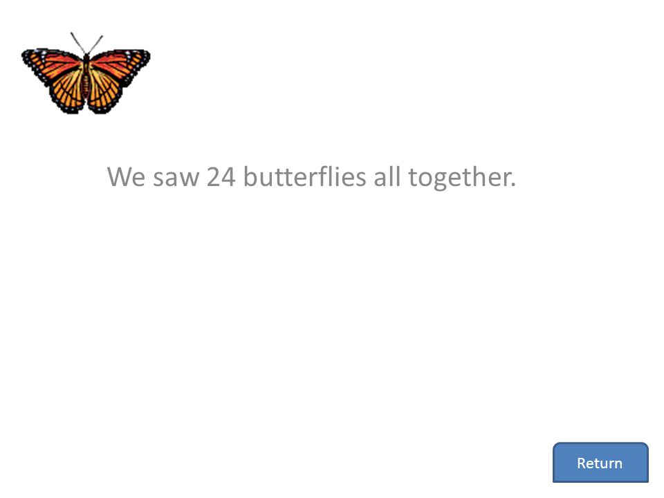 We saw 24 butterflies all together.