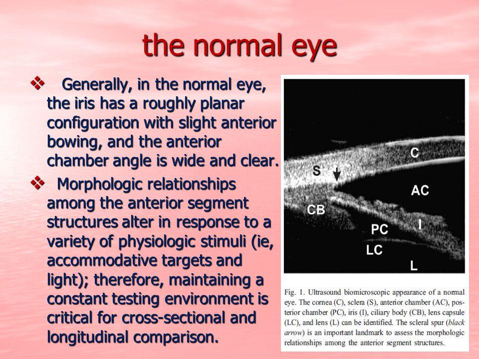 the normal eye