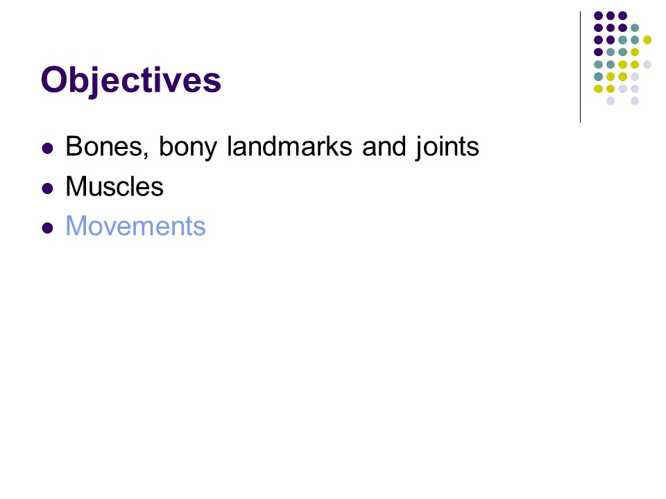Objectives Bones, bony landmarks and joints Muscles Movements