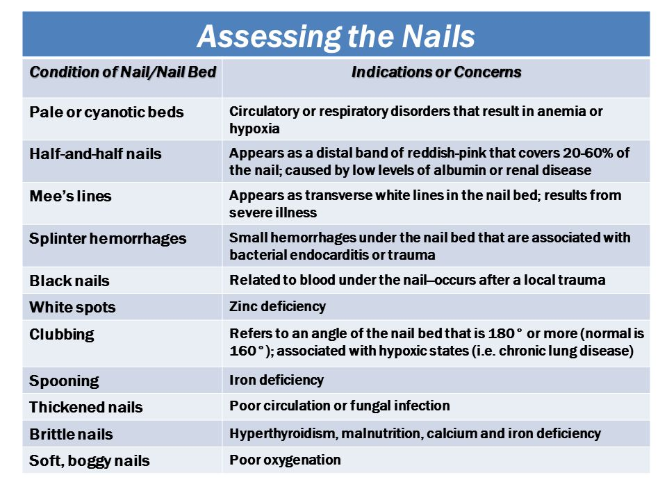 Condition of Nail/Nail Bed Indications or Concerns