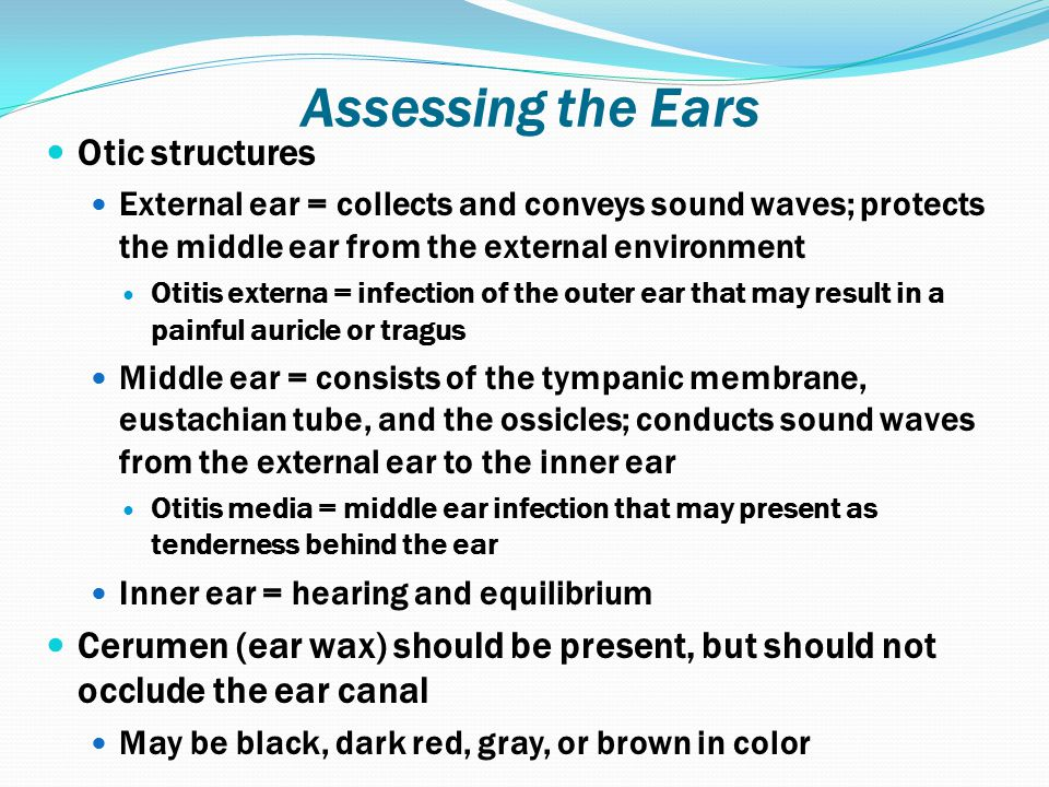 Assessing the Ears Otic structures