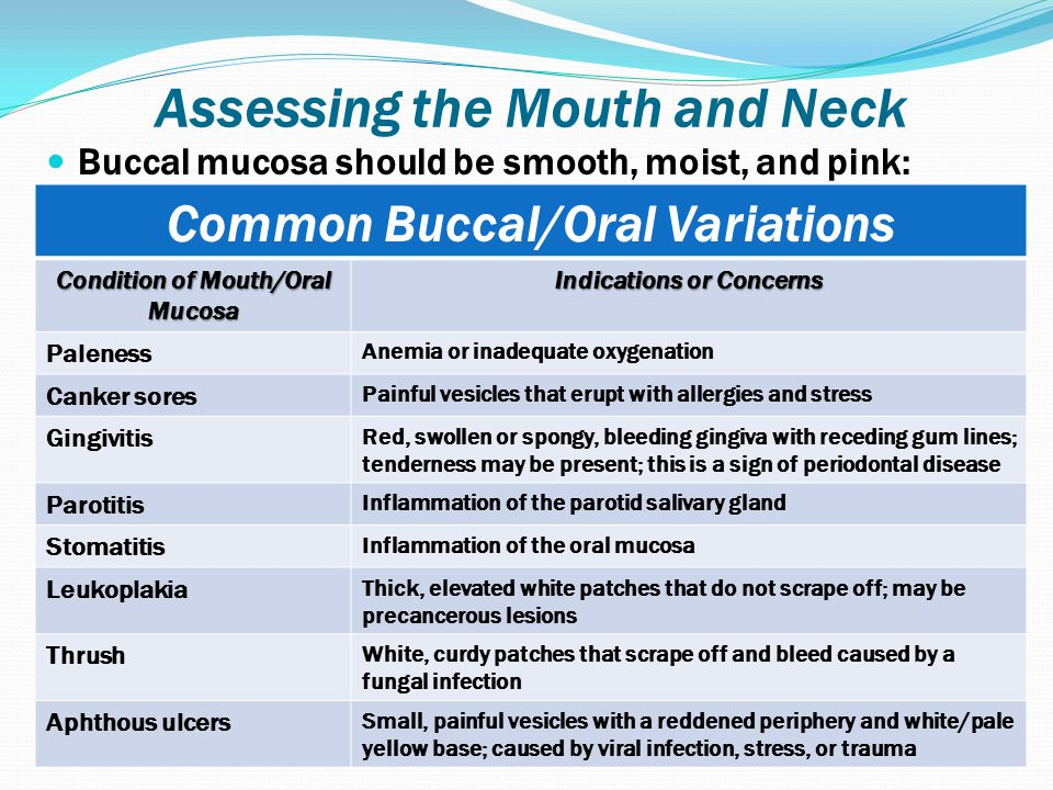 Assessing the Mouth and Neck