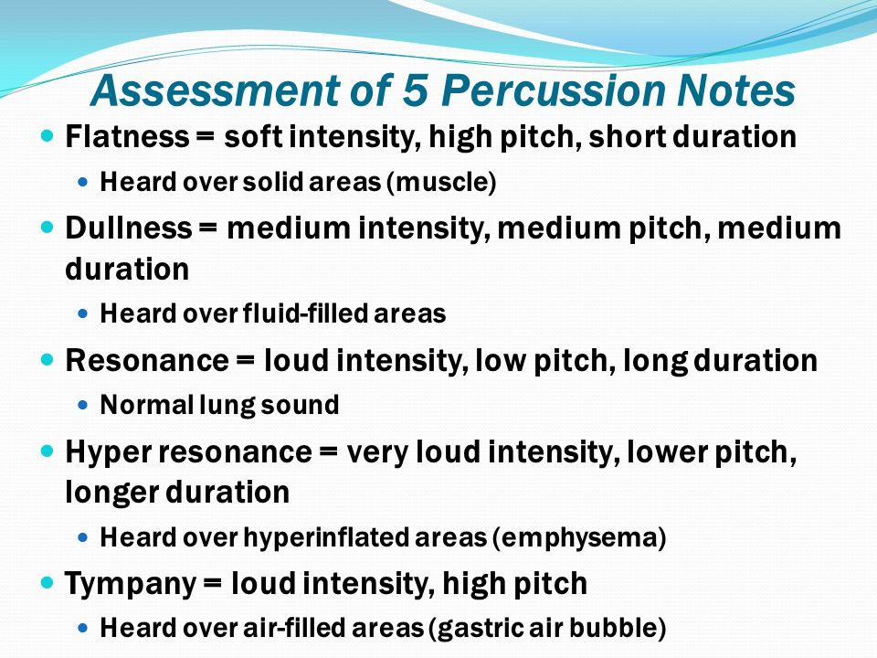 Assessment of 5 Percussion Notes