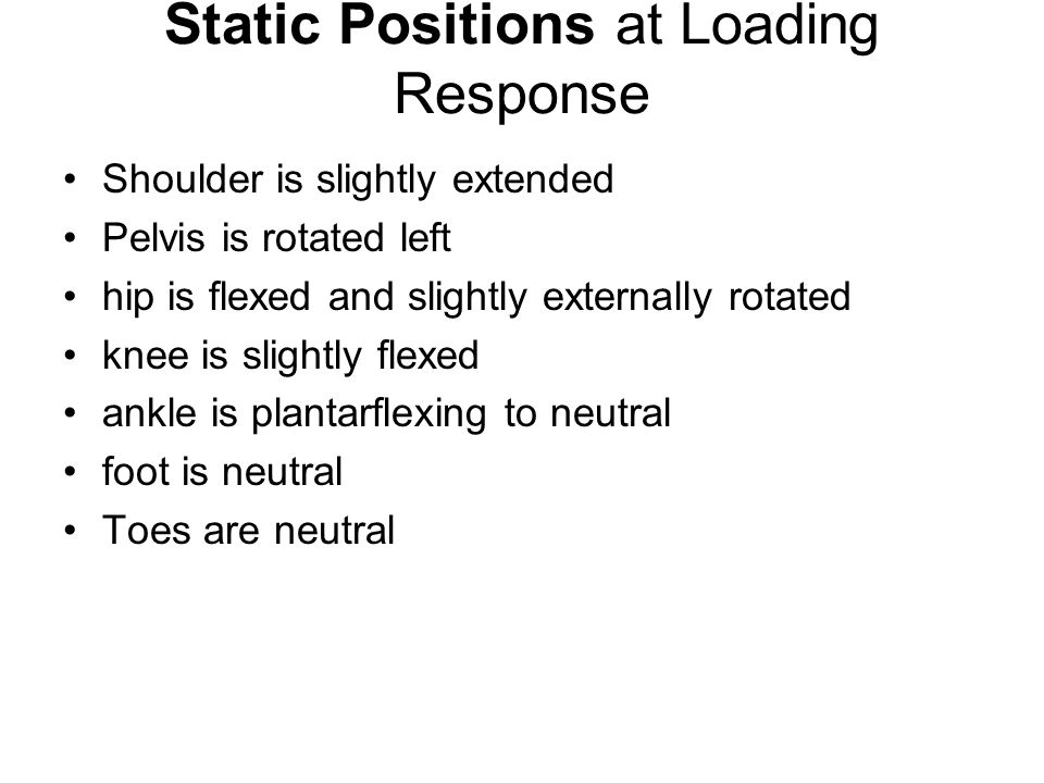 Static Positions at Loading Response