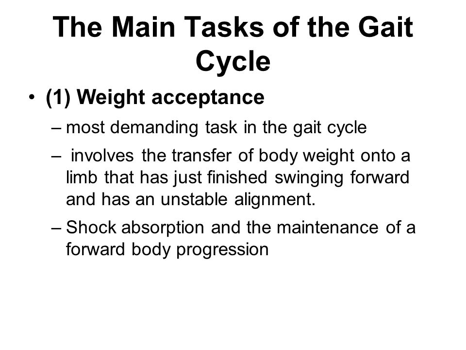 The Main Tasks of the Gait Cycle