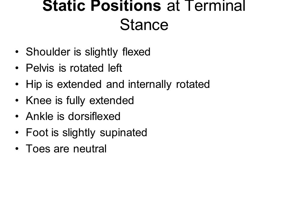 Static Positions at Terminal Stance