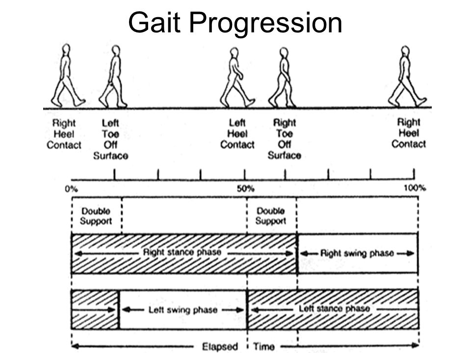 Gait Progression
