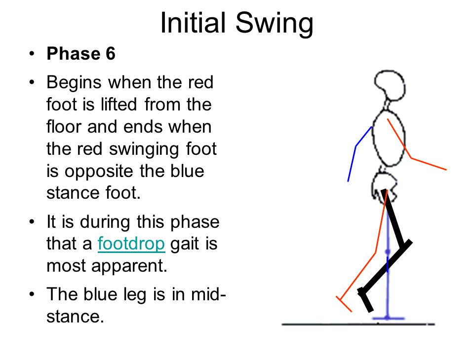 Initial Swing Phase 6.