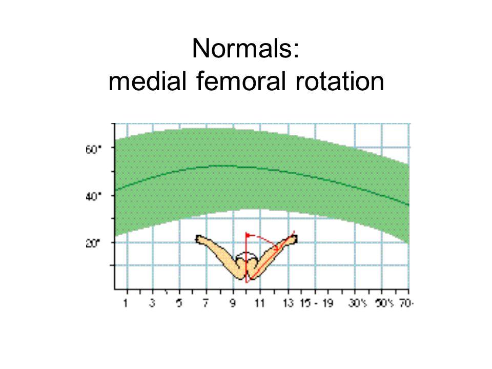 Normals: medial femoral rotation
