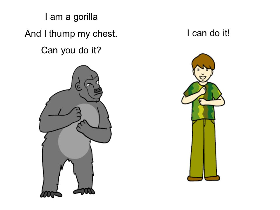 I am a gorilla And I thump my chest. Can you do it I can do it!