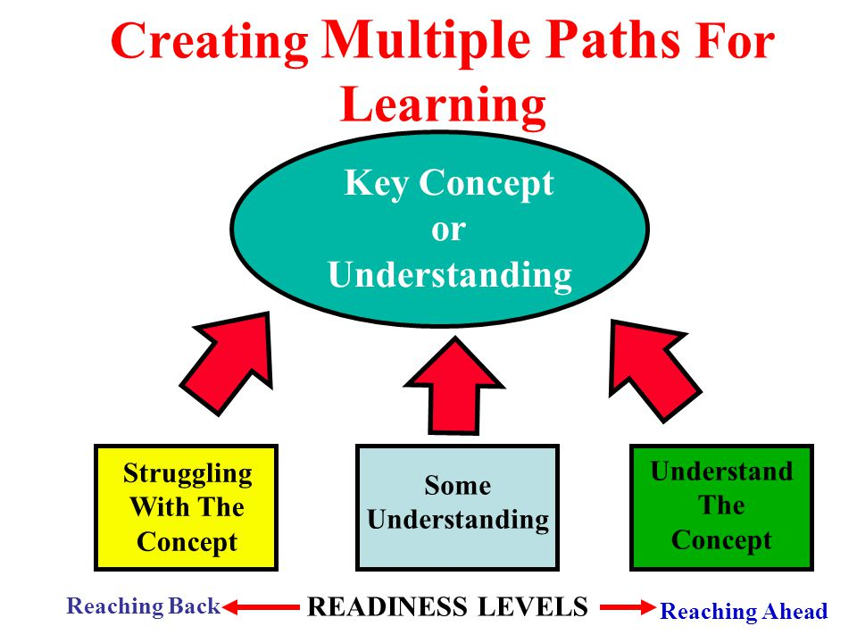Creating Multiple Paths For Learning