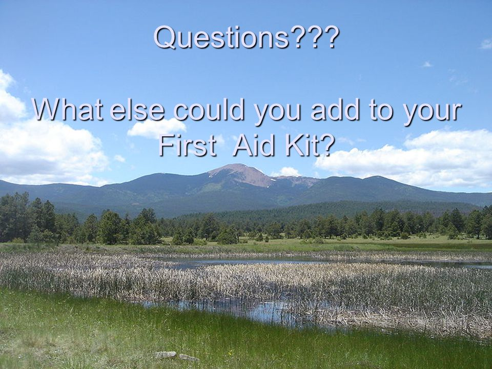 Questions What else could you add to your First Aid Kit