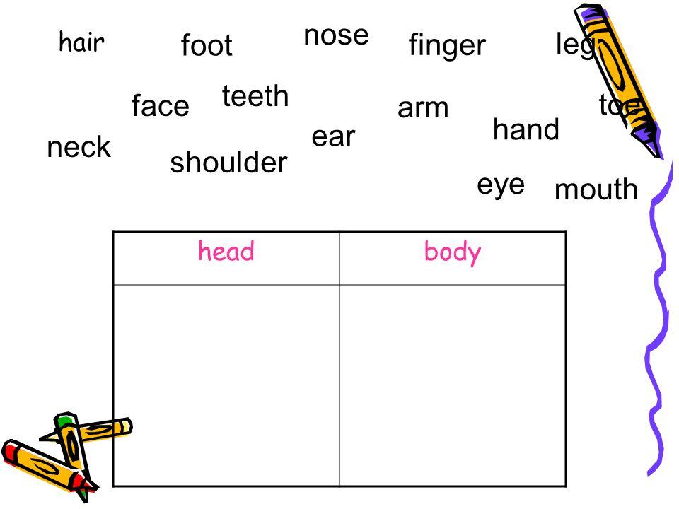 nose finger leg foot teeth toe arm face hand ear neck shoulder eye