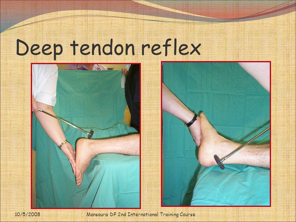 Deep tendon reflex 10/5/2008 Mansoura DF 2nd International Training Course