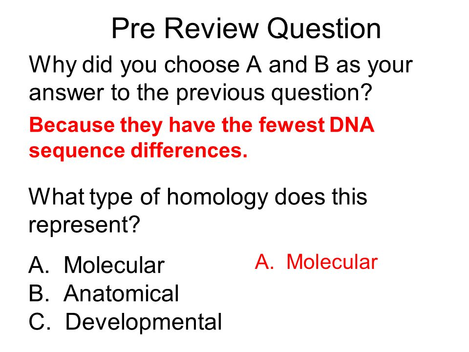 Pre Review Question Why did you choose A and B as your answer to the previous question Because they have the fewest DNA sequence differences.