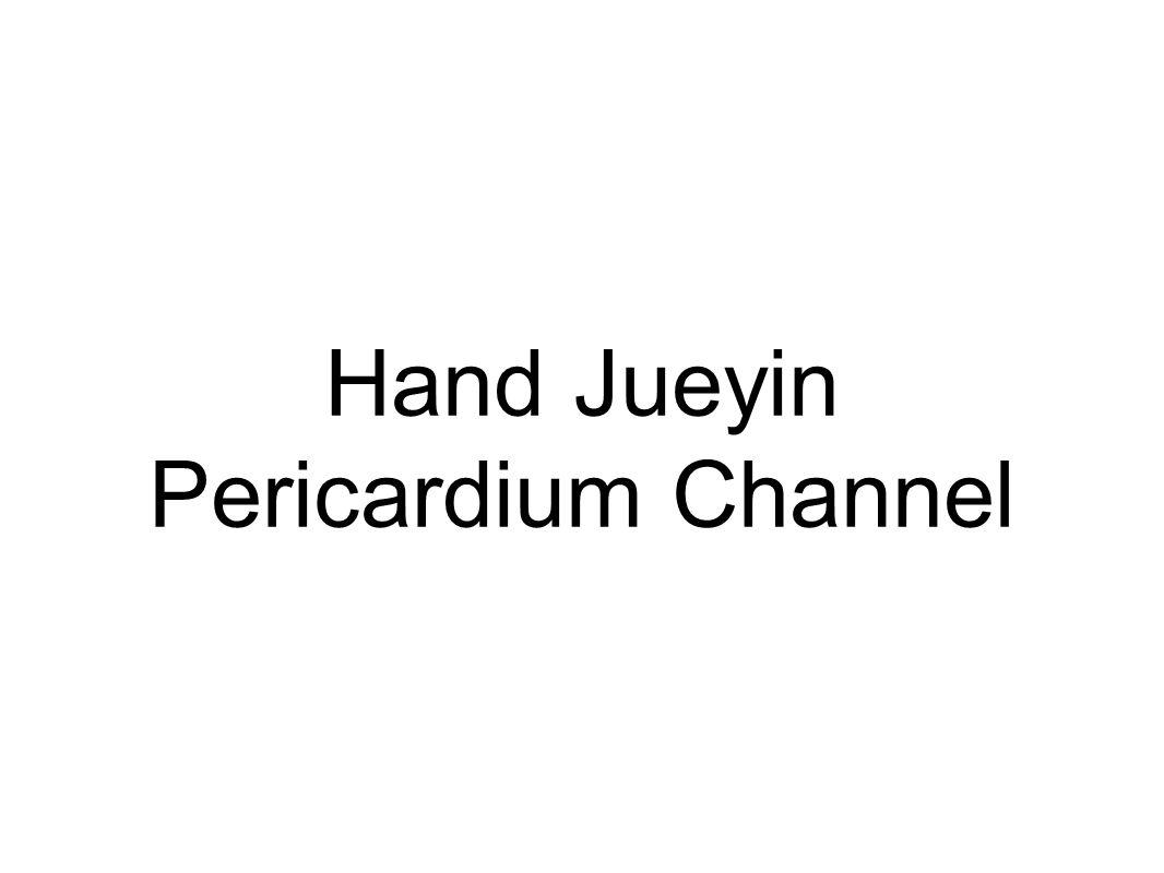 Hand Jueyin Pericardium Channel