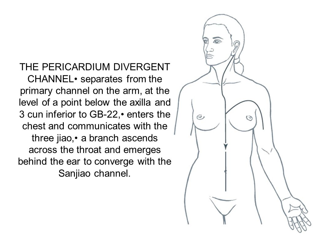 THE PERICARDIUM DIVERGENT CHANNEL• separates from the primary channel on the arm, at the level of a point below the axilla and 3 cun inferior to GB-22,• enters the chest and communicates with the three jiao,• a branch ascends across the throat and emerges behind the ear to converge with the Sanjiao channel.