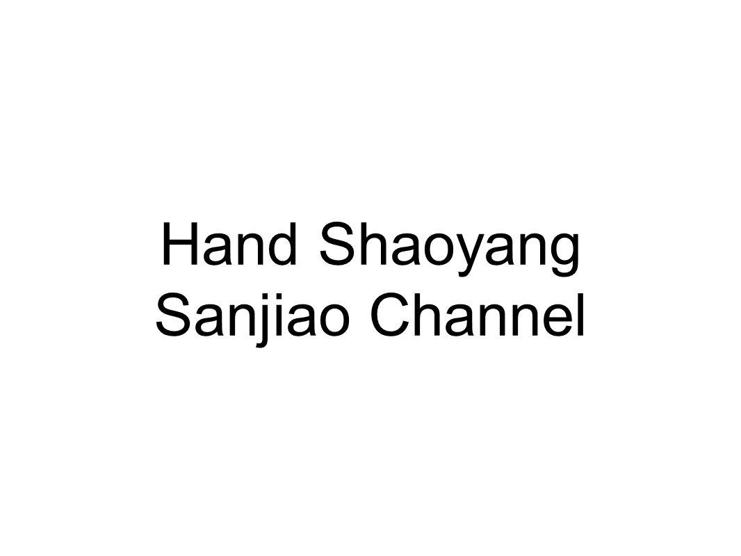Hand Shaoyang Sanjiao Channel