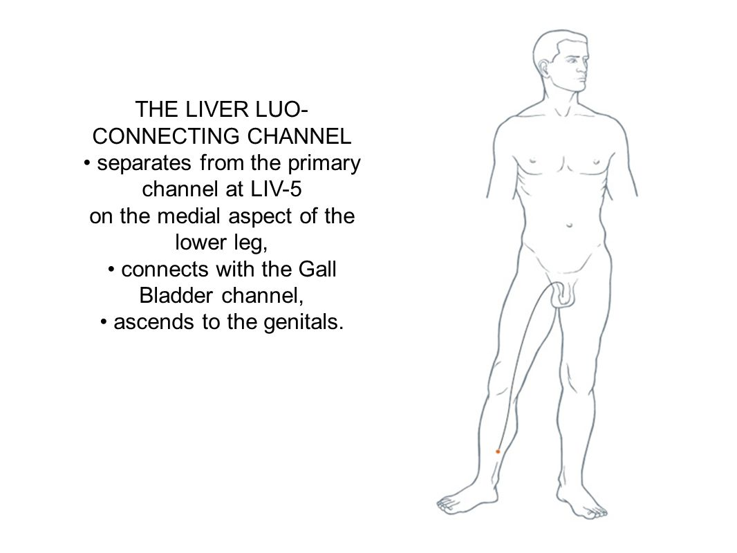 THE LIVER LUO-CONNECTING CHANNEL