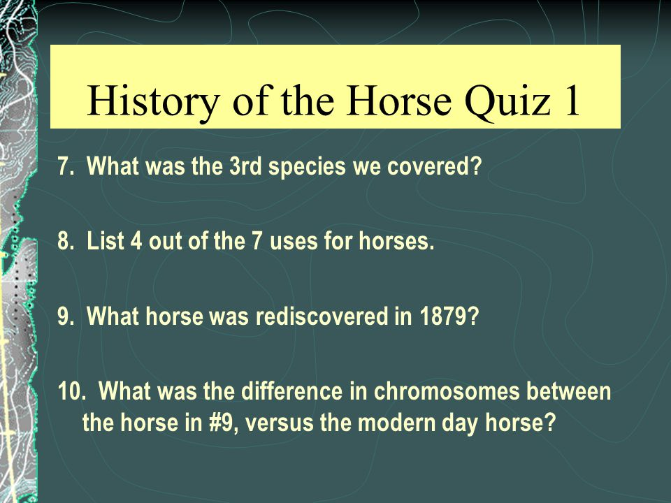 History of the Horse Quiz 1