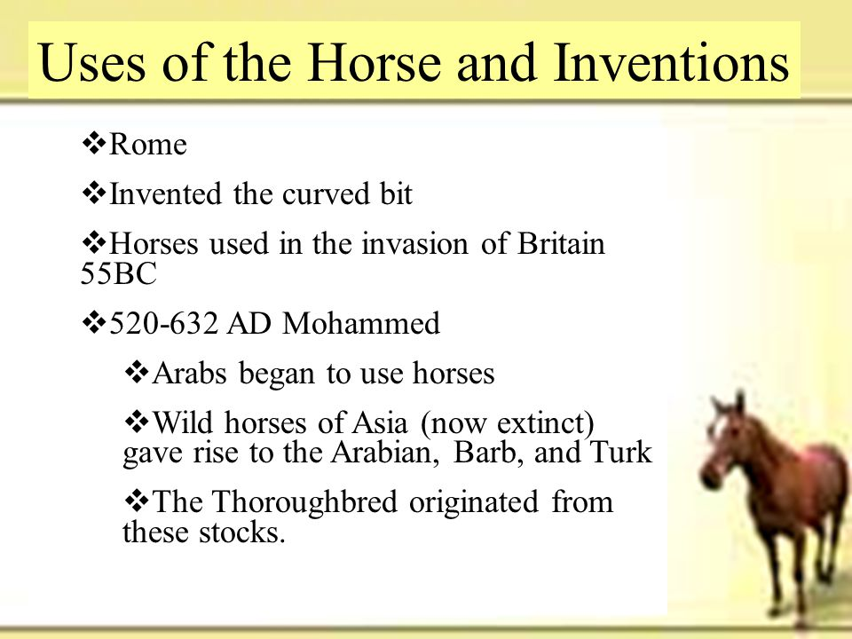 Uses of the Horse and Inventions
