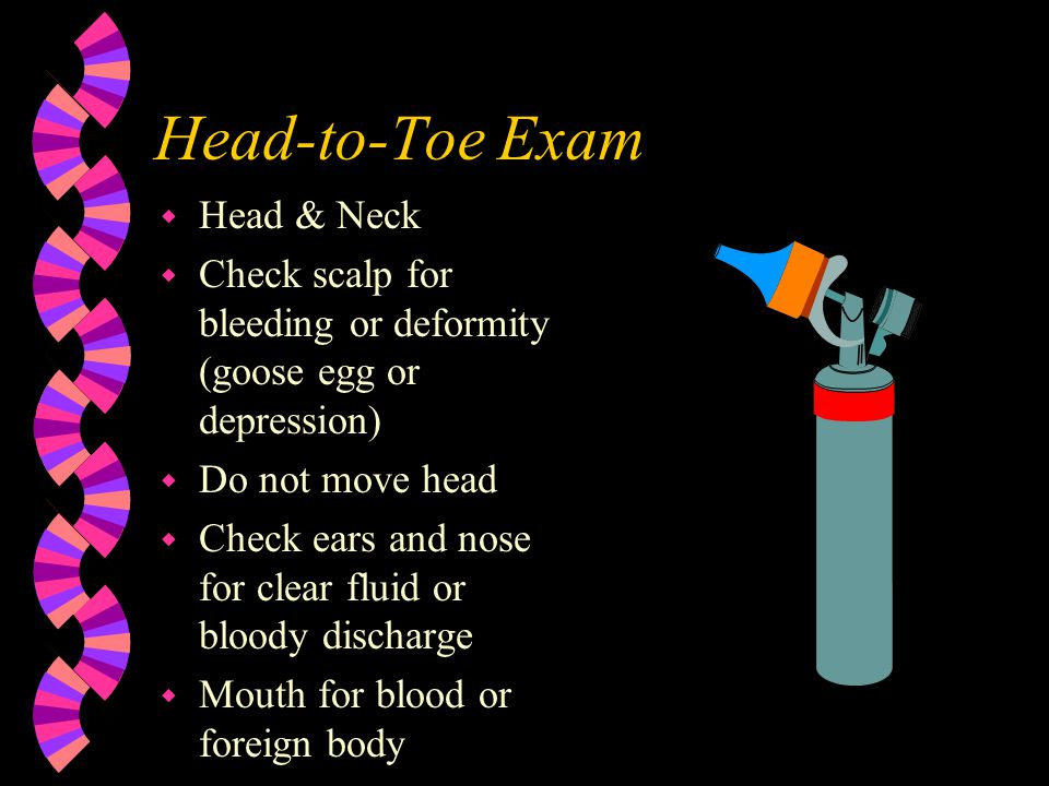 Head-to-Toe Exam Head & Neck