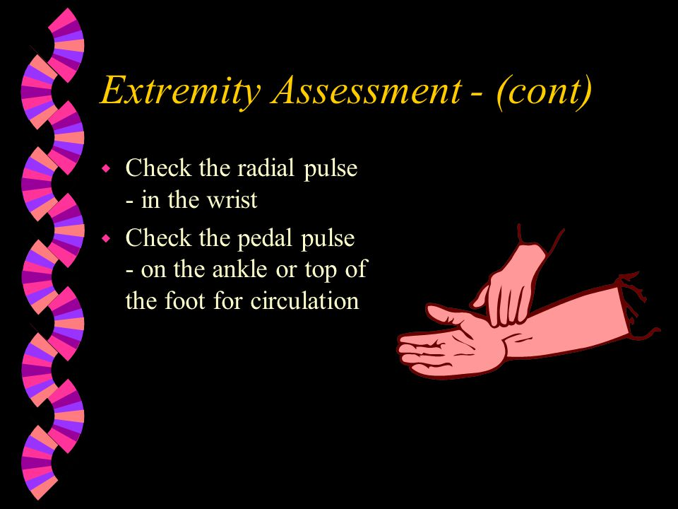 Extremity Assessment - (cont)