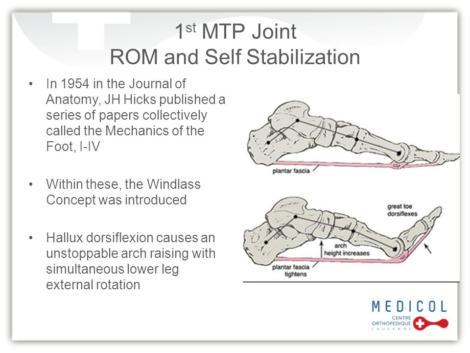 1st MTP Joint ROM and Self Stabilization