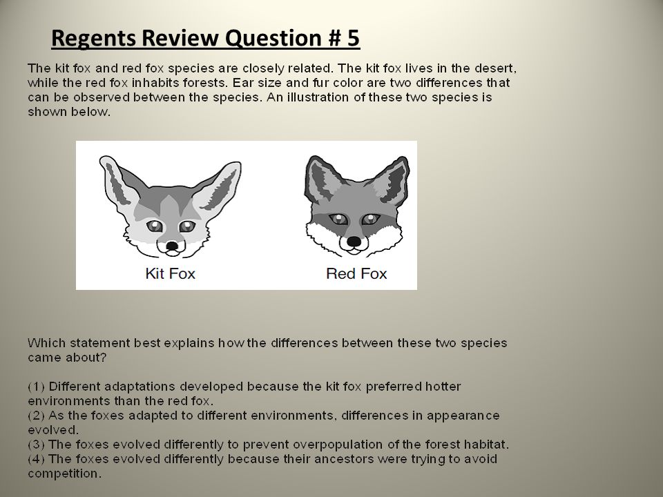 Regents Review Question # 5