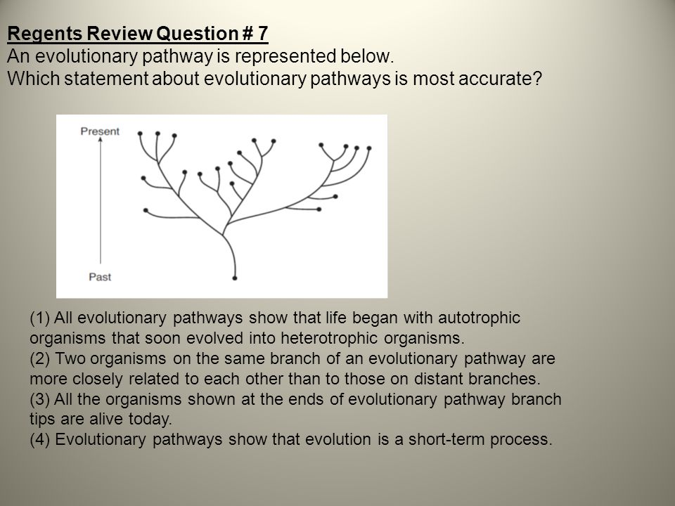 Regents Review Question # 7