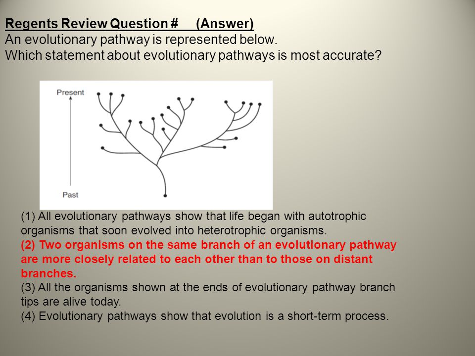 Regents Review Question # (Answer)
