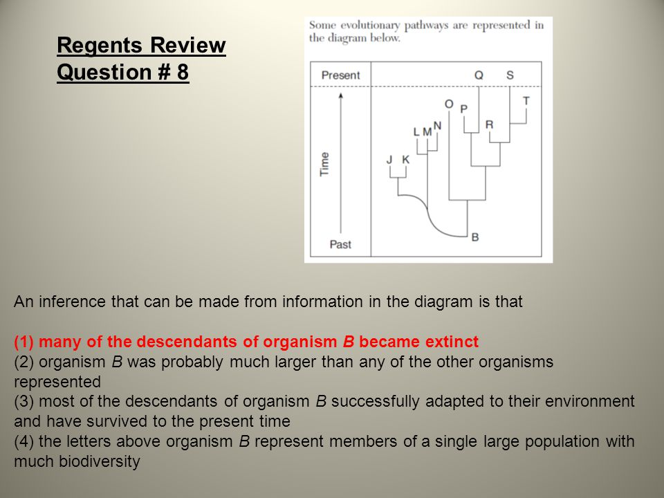 Regents Review Question # 8