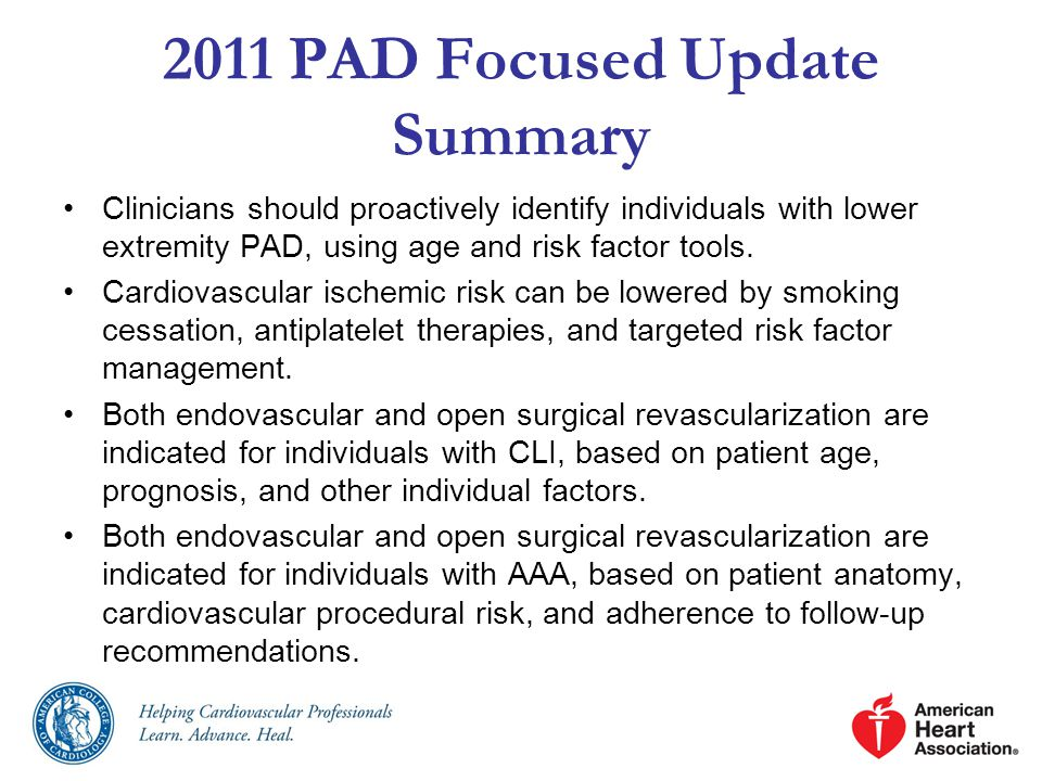 2011 PAD Focused Update Summary