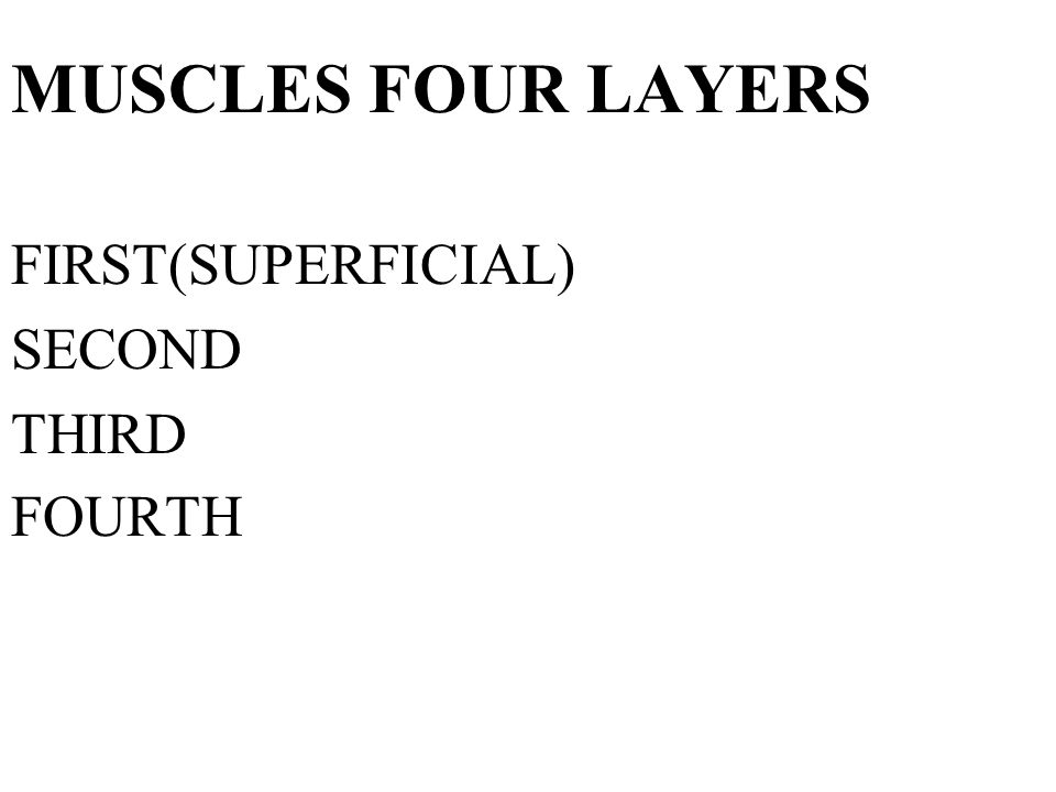 MUSCLES FOUR LAYERS FIRST(SUPERFICIAL) SECOND THIRD FOURTH
