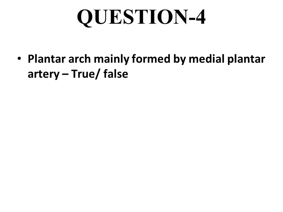 QUESTION-4 Plantar arch mainly formed by medial plantar artery – True/ false